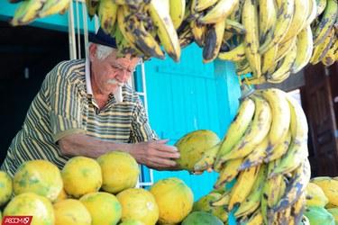 Aldenio Pascoal de Oliveira vende há 19 anos frutas no bairro Estação Experimental