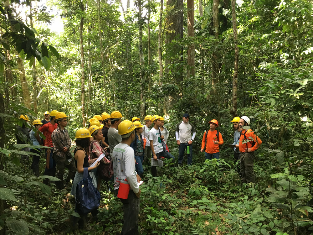 Engenharia Florestal promove atividade no Antimary