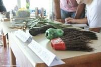 Engenharia Florestal realiza mostra na Ufac