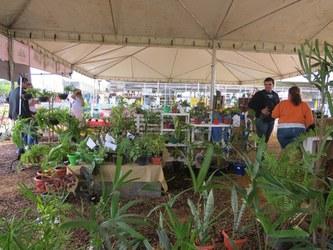 Feira de Jardinagem é uma das atrações da SBPC