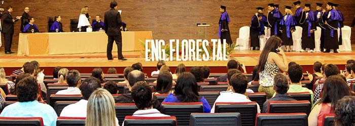 Engenharia Florestal forma mais 11 profissionais