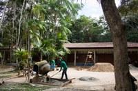 Ufac realiza reformas no Parque Zoobotânico