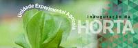 Unidade Experimental Agrícola - Inauguração da Horta